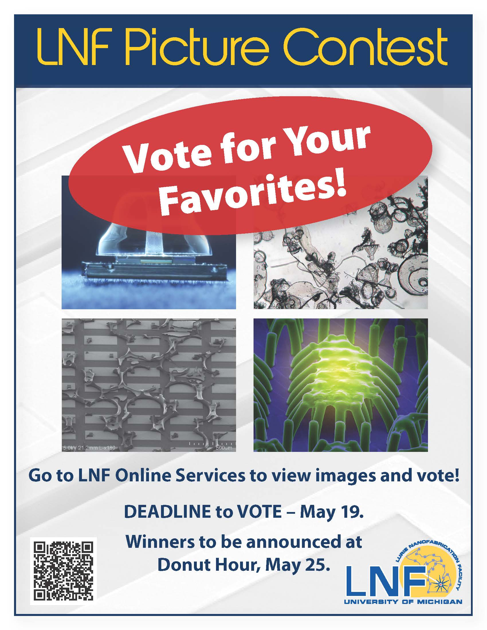2017-04 Image Contest Voting Flyer